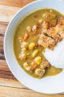 Curry di maiale fritto giapponese cibo. foto