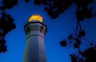illumina la notte foto