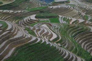 terrazze di riso longji, longsheng foto