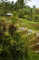 Besakih, Bali. foto