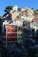 riomaggiore (cinque terre) - case colorate foto
