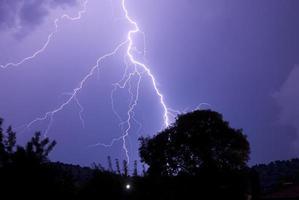 radici fulminanti di notte che colpiscono vicino all'albero foto