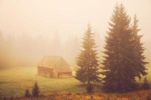 cabina sul campo