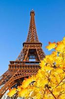 torre eiffel, francia foto