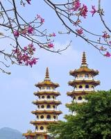 """il famoso punto panoramico """"torre di drago e tigre"""" foto"""