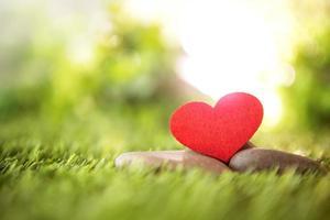 cuore di carta rossa sull'erba verde foto
