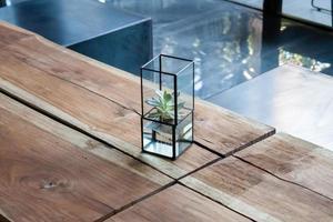 arredamento succulento su un tavolo