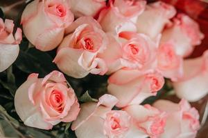 bouquet di rose rosa foto