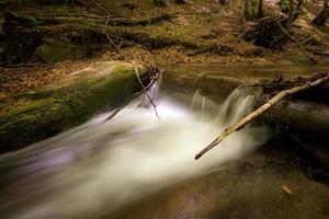 cascata nella foresta