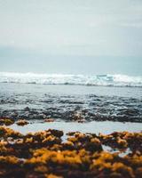 onde su una spiaggia foto