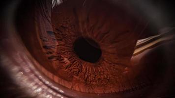 vista del primo piano dell'occhio marrone foto
