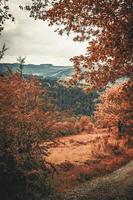 fotografia paesaggistica di montagne e alberi foto