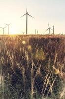 silhouette vintage di un mulino a vento in un campo rurale foto