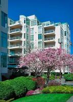 residenza di città moderna con ciliegio in fiore davanti.