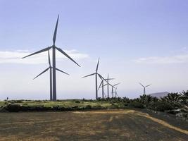fattoria di turbine eoliche foto