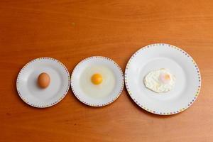 fasi dell'uovo foto