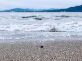 primo piano di sabbia dall'acqua foto