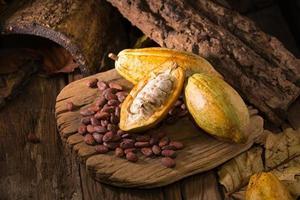 fave di cacao crudo e baccelli di cacao foto