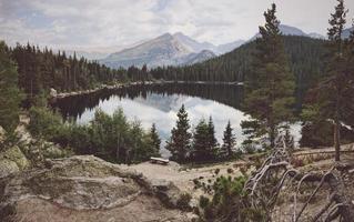 lago tra gli alberi foto