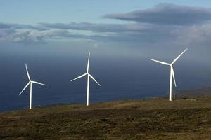 il parco eolico di auwahi, maui, hawaii foto