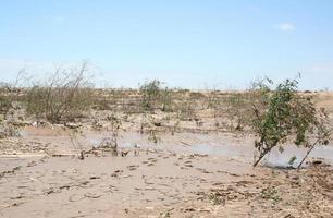 Strada fangosa del sale dopo forti piogge, Skeleton Coast, Namibia, Africa foto