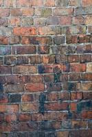 muro di mattoni foto