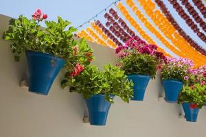 vasi di fiori della fiera di cordoba foto