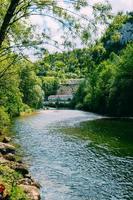 alberi, rocce e fiume