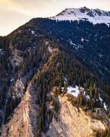 fotografia aerea di alberi di pino sulla montagna foto