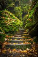 scale di pietra