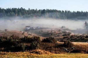 nebbia sulla montagna foto