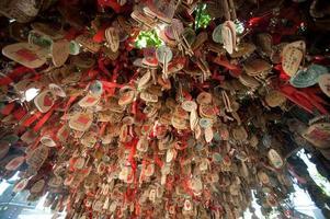 segni di buon auspicio (legno dell'amore). foto