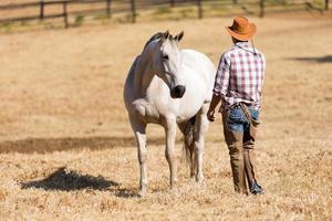 cowboy e cavallo foto