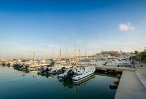 barche da pesca nel porto turistico di ibiza