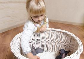 piccola ragazza bionda che tiene un gattino Sphynx foto
