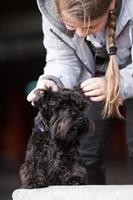 ragazza con il cane foto
