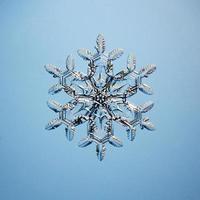 cristalli di ghiaccio fiocco di neve macro presenti naturali foto