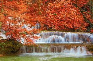 cascata nella giungla della foresta pluviale profonda al parco nazionale,