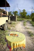 champagne safari nella riserva di caccia di moremi. namibia foto