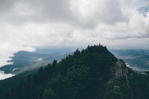 alberi verdi sulla montagna foto