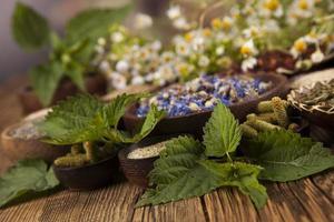 medicina alternativa, sfondo di erbe secche