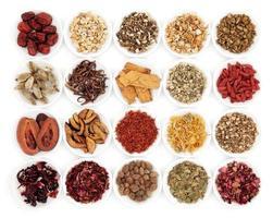 campioni di erbe medicinali cinesi tradizionali foto