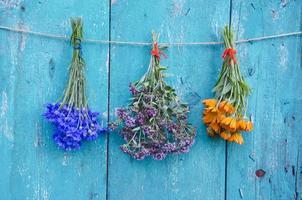 mazzo di fiori di tre erbe mediche sulla parete di legno