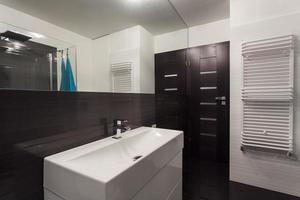 appartamento minimalista - lavandino della nave foto