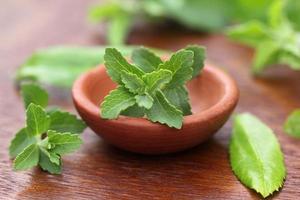 stevia con altre erbe medicinali