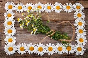 bouquet di camomiles sullo sfondo di legno invecchiato foto