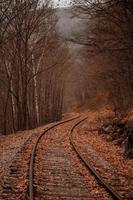binario ferroviario in una foresta di autunno foto