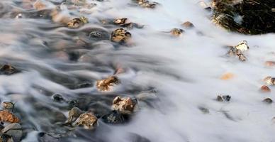 flusso 2 foto