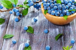 prugnolo ai frutti di bosco foto