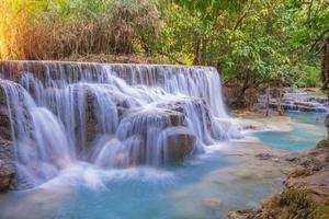 cascata nella foresta pluviale (cascate di tat kuang si in laos.